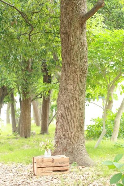 癒しの撮影_d0086634_13550114.jpg