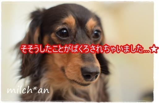 b0115642_23103181.jpg