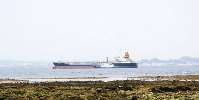 カーミージーの海の散策⑫_c0180460_22473977.jpg