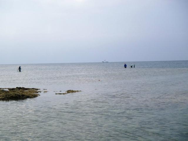 カーミージーの海の散策⑫_c0180460_2248032.jpg