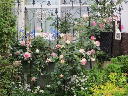 お花いっぱいの庭に近づきました~♪_a0243064_22254316.jpg