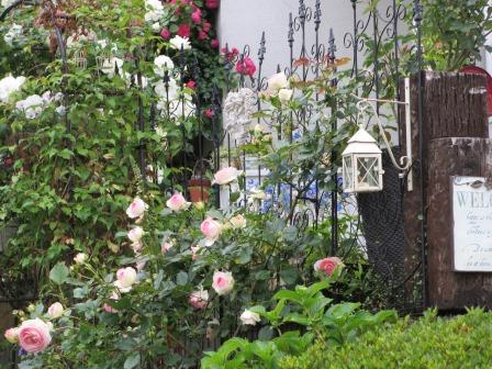 お花いっぱいの庭に近づきました~♪_a0243064_222604.jpg
