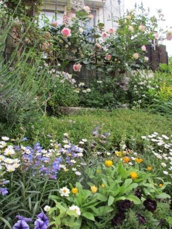 お花いっぱいの庭に近づきました~♪_a0243064_22271432.jpg