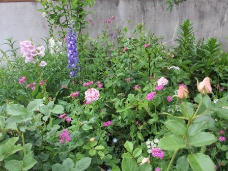 お花いっぱいの庭に近づきました~♪_a0243064_2235133.jpg