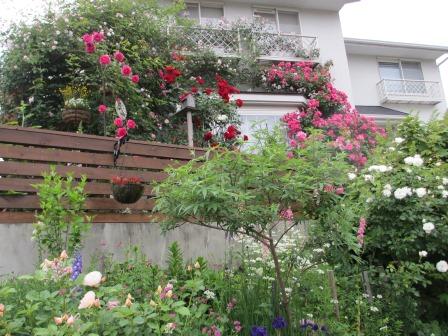 お花いっぱいの庭に近づきました~♪_a0243064_2245951.jpg