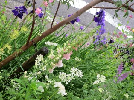 お花いっぱいの庭に近づきました~♪_a0243064_2271488.jpg