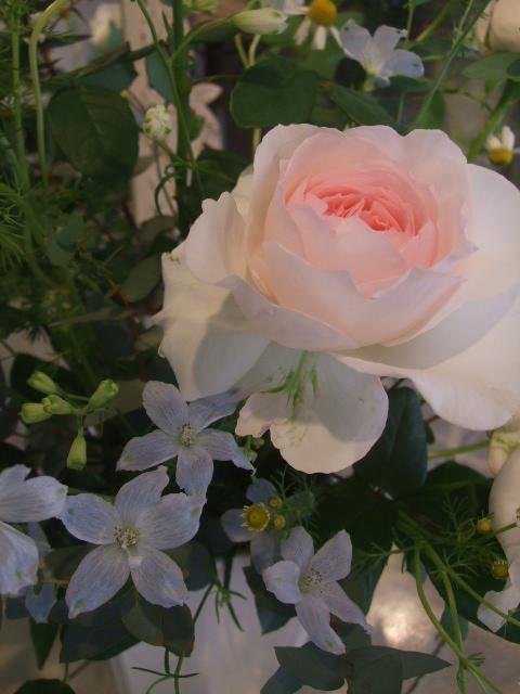 オークリーフ花の教室(遠藤さんの作品)_f0049672_16135533.jpg