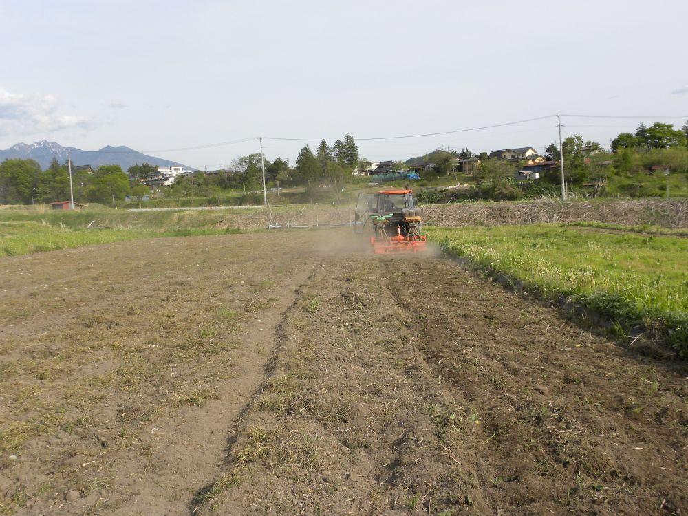 夏蕎麦の種蒔きがスタートです・・・。_b0329588_19375979.jpg