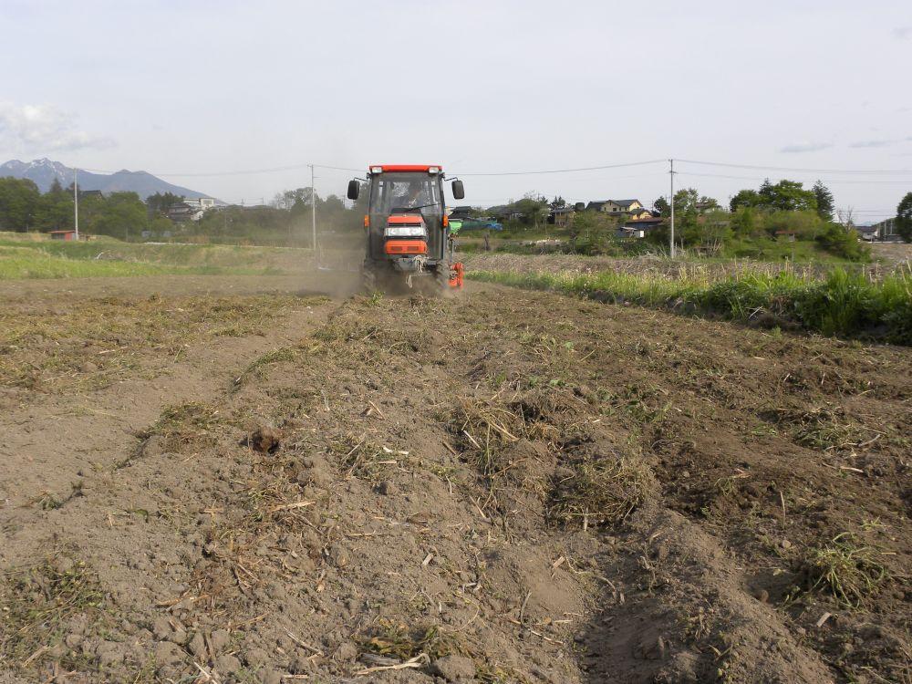 夏蕎麦の種蒔きがスタートです・・・。_b0329588_19381065.jpg