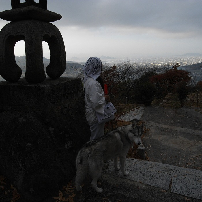 Memory of the second pilgrimage with husky HANA II_c0049299_13103515.jpg