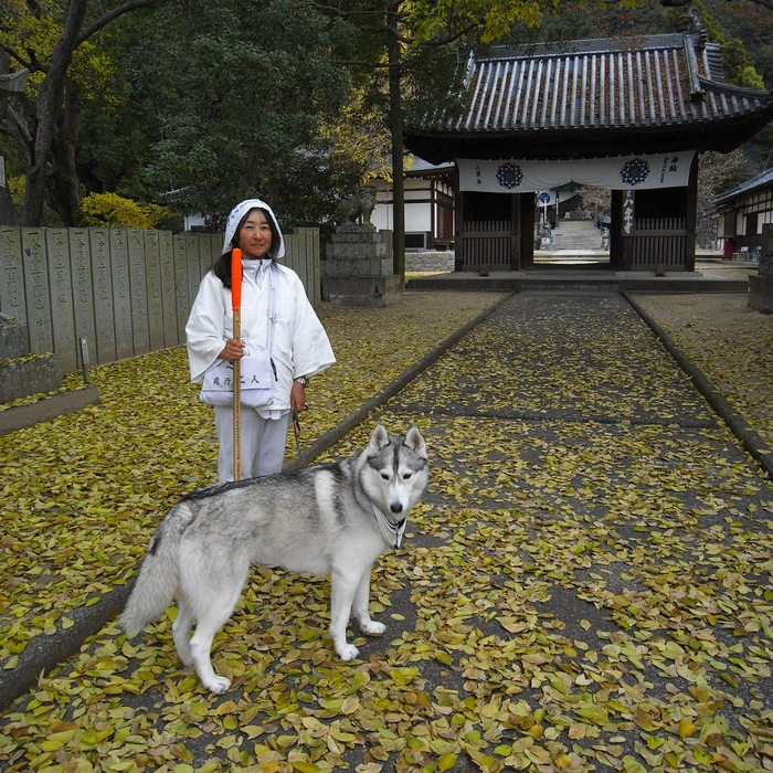 Memory of the second pilgrimage with husky HANA II_c0049299_1313976.jpg