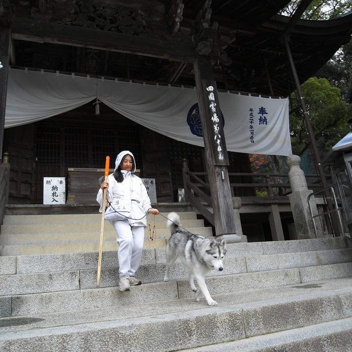 Memory of the second pilgrimage with husky HANA II_c0049299_1315424.jpg