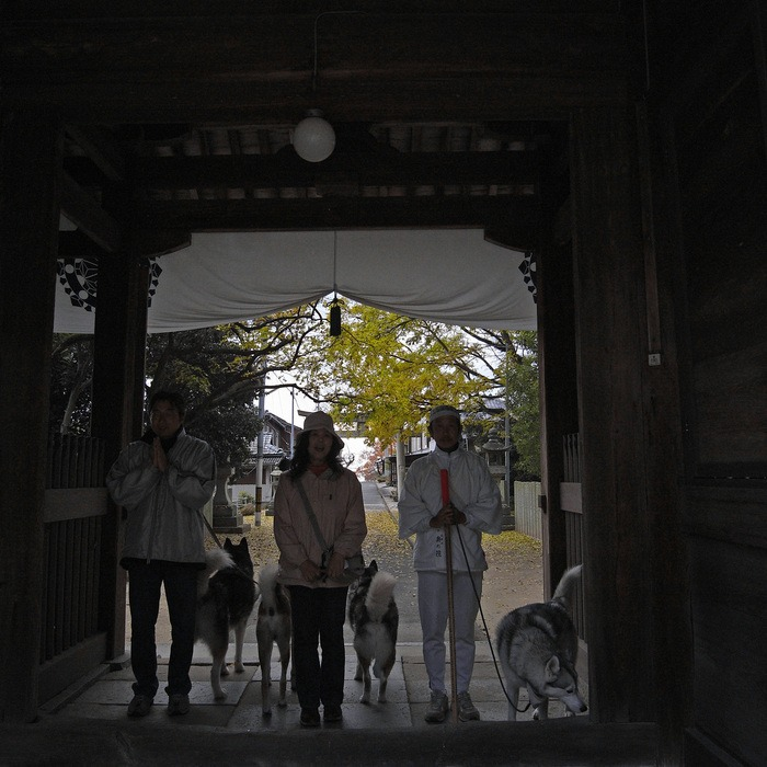 Memory of the second pilgrimage with husky HANA II_c0049299_13174147.jpg