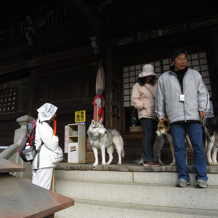 Memory of the second pilgrimage with husky HANA II_c0049299_1321476.jpg