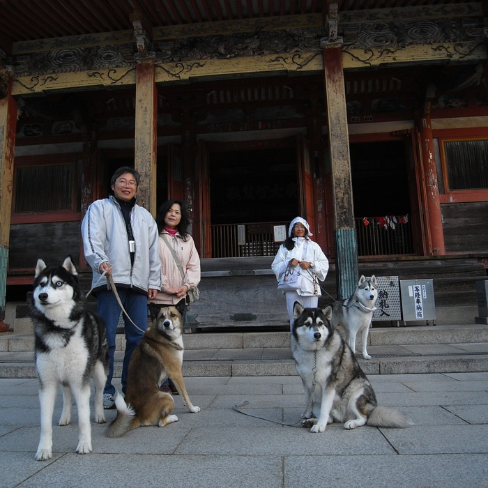 Memory of the second pilgrimage with husky HANA II_c0049299_132151.jpg
