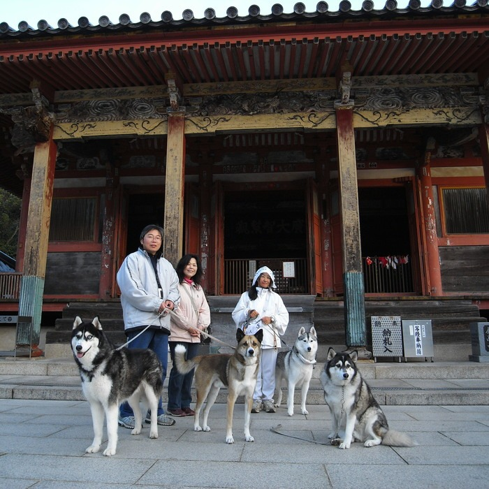 Memory of the second pilgrimage with husky HANA II_c0049299_1321570.jpg