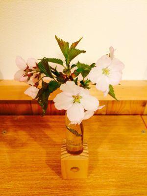 桜・・・_f0096216_203554100.jpg