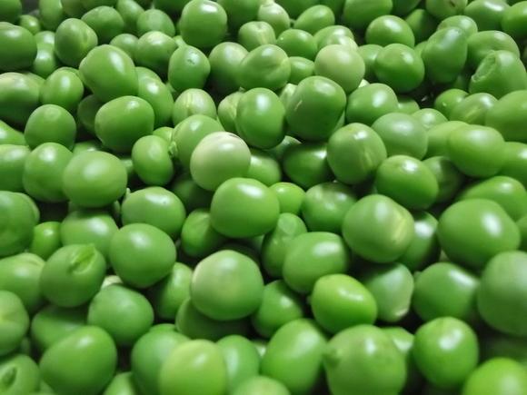 グリーンの真珠?が採れました。_b0137932_22134939.jpg