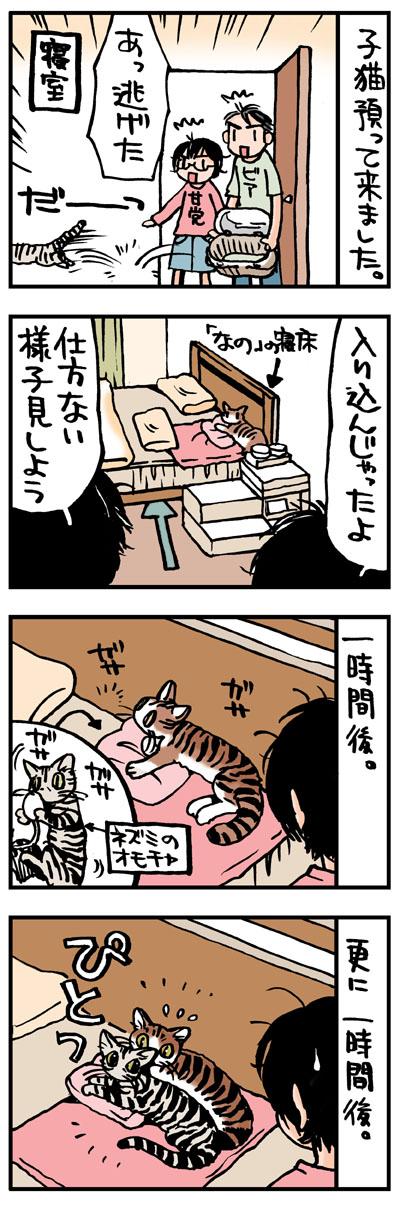 犬猫4コマ「新キャラ登場」_d0118933_18324659.jpg