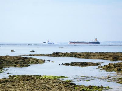 カーミージーの海の散策⑬_c0180460_15235271.jpg