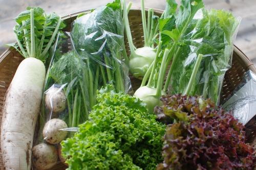 今週の野菜セット(5/22~5/24着)_c0110869_14495837.jpg