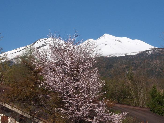 今シーズン一回目の乗鞍岳_e0292469_15492370.jpg