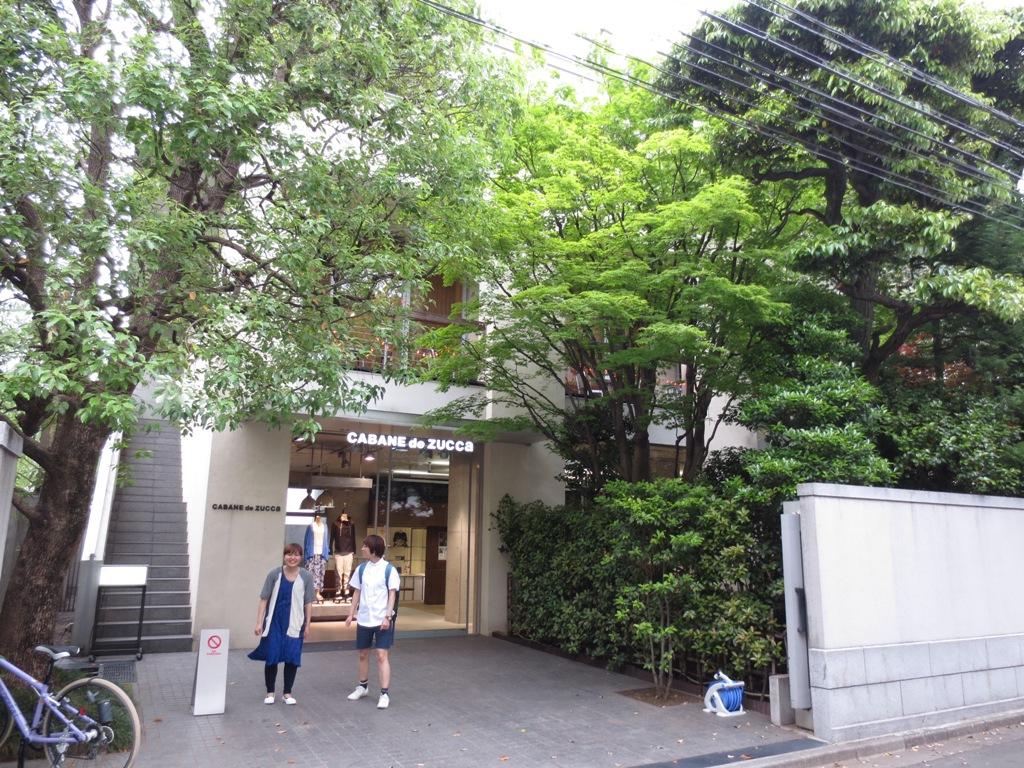 緑に彩られた街並み@南青山_c0310571_09182510.jpg