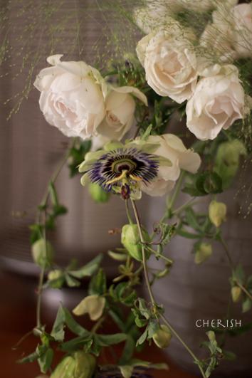 セレクトショップにお花をお届けします_b0208604_16412204.jpg