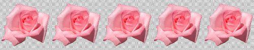 d0048312_20122081.jpg