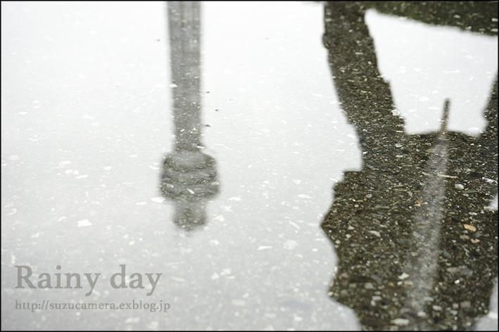 雨の水曜日_f0100215_0202335.jpg