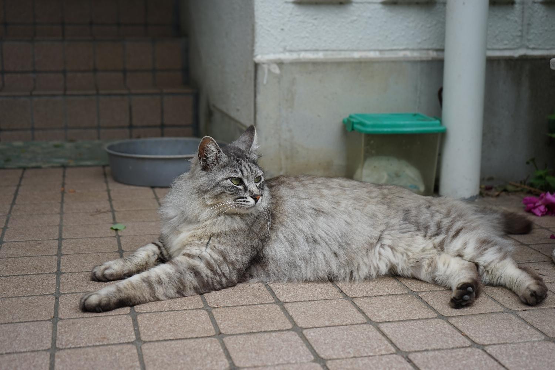 岐阜へ_b0069128_1043549.jpg
