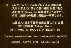 a0217029_2562619.jpg