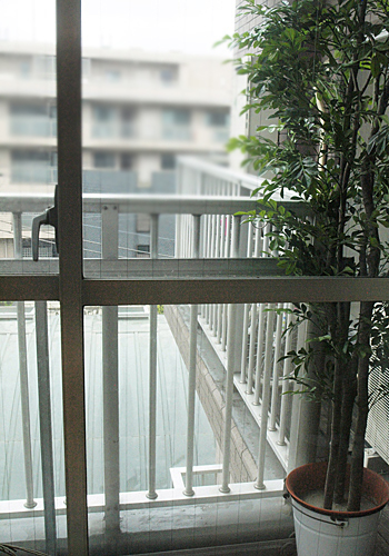 miniature* BROCANTE 、窓枠完成_e0172847_183619.jpg