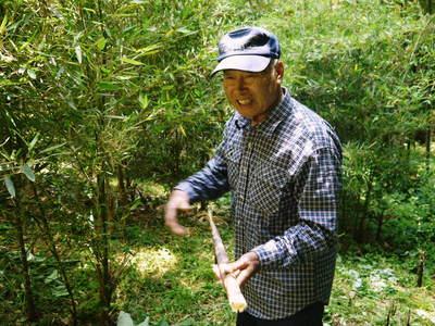 絶品たけのこ『山竹』の竹林に独占取材!!_a0254656_18363876.jpg