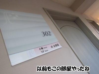d0020869_1301341.jpg