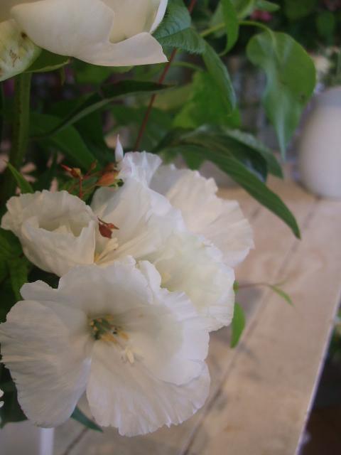 オークリーフ花の教室(赤地さんと宮原さんの作品)_f0049672_1774923.jpg