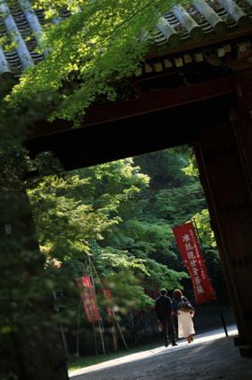 観光客が少なくなった時間帯....新緑の中....静かな時間が..._b0194185_22414122.jpg