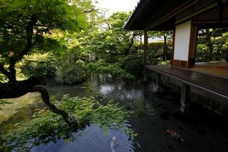 アイラブとてつもない日本:「嫌日家から親日家へ」の道へまっしぐらの外人たち_e0171614_18341490.jpg