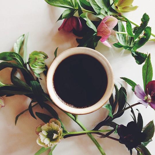 coffee について_f0032814_1495682.jpg