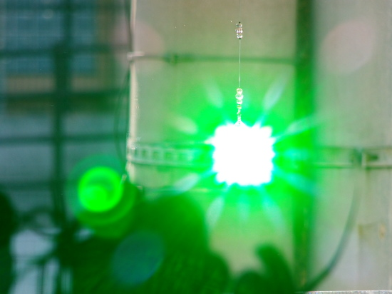 greengreenな有機の「バジルソース」作り_a0125419_19164842.jpg