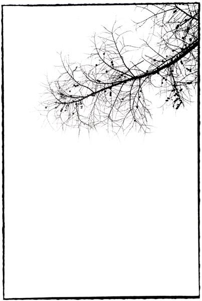 f0182924_209313.jpg