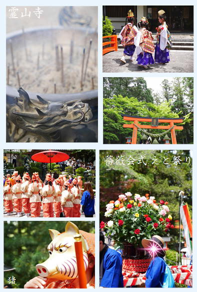 霊山寺バラ園続き~_f0292335_21553519.jpg