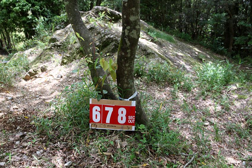 d0058941_2010332.jpg