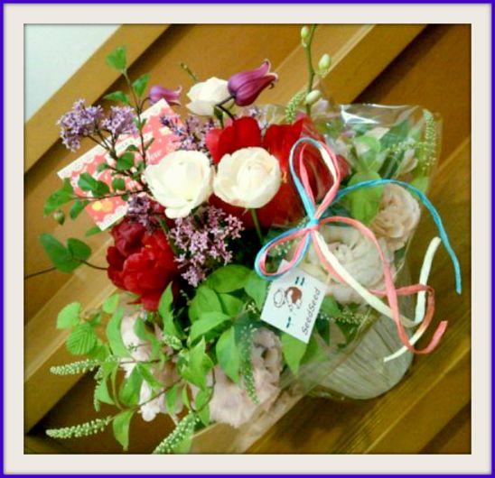 母の日のお花 ~Seed Seedさん☆~_b0241353_16435896.jpg