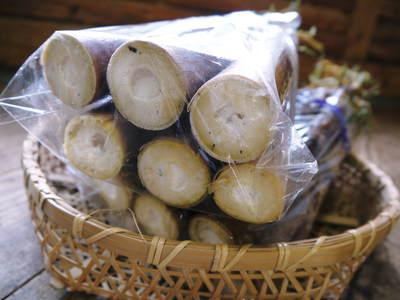 絶品たけのこ『山竹』 下茹でいらずの簡単皮むき!!美味しさの秘密に迫る!!_a0254656_20394261.jpg