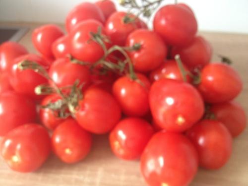 トマト5kg、1ユーロ!_b0300862_5353636.jpg