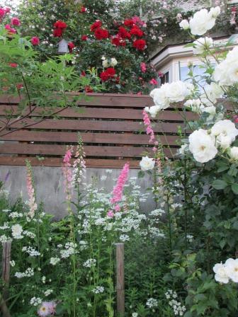 お花いっぱいで癒されています_a0243064_07045419.jpg