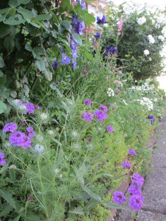お花いっぱいで癒されています_a0243064_07252955.jpg