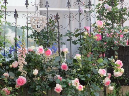 お花いっぱいで癒されています_a0243064_07301737.jpg