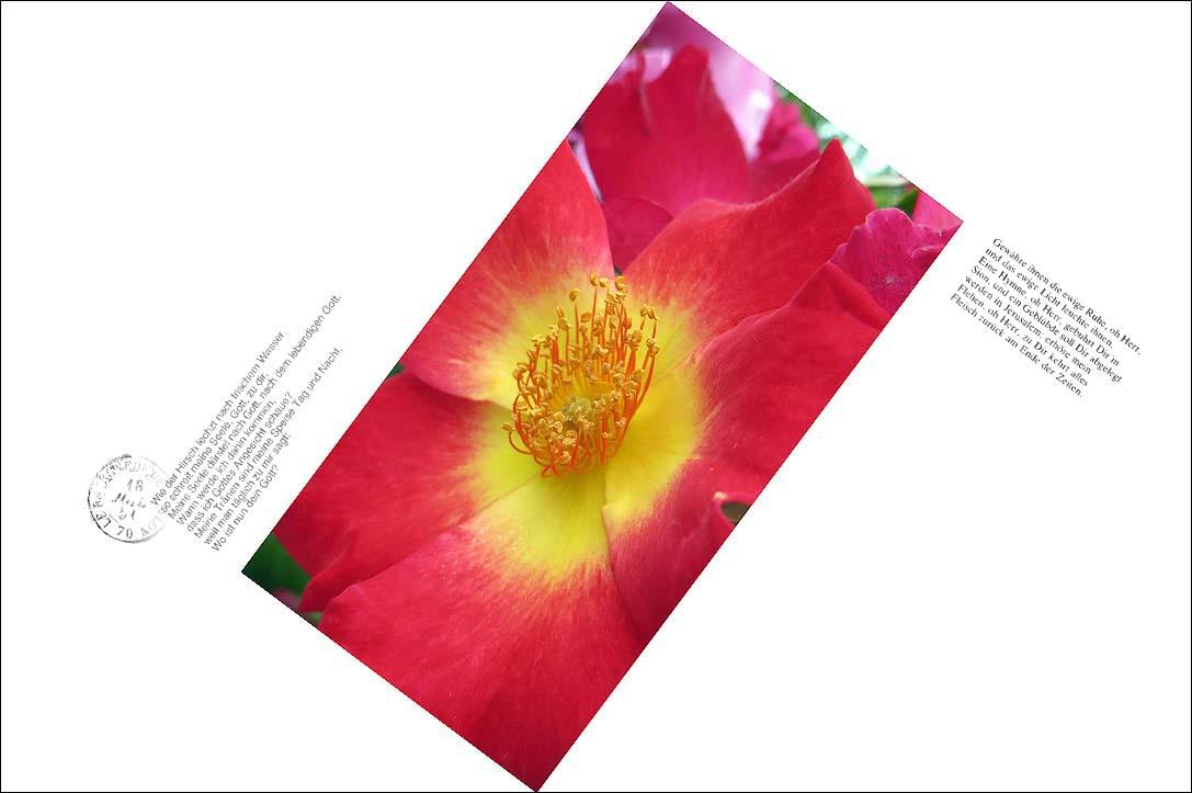 f0198771_004010.jpg